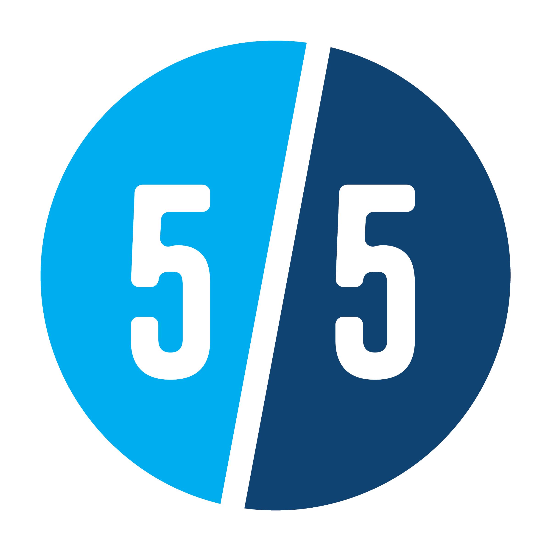 55 bug